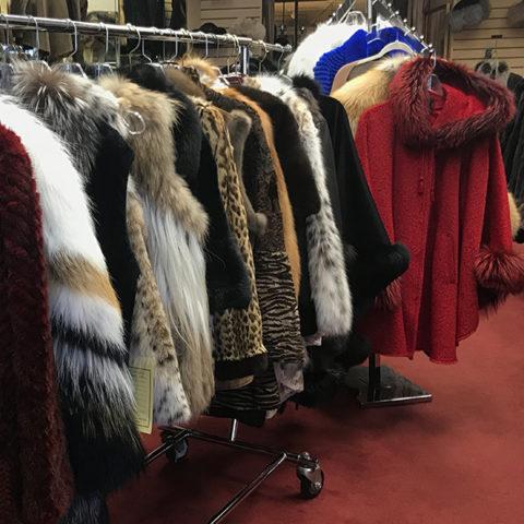 Holloway Furs